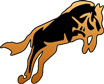RM Equine Training